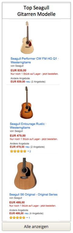 Top Seagull Gitarren Modelle