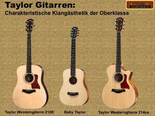 Taylor Gitarren im Test